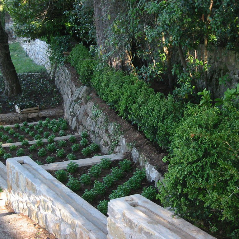 Entretien de jardins privés & publics